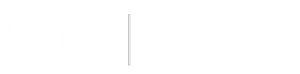 NTN consulting services logo white